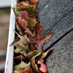 Clogged gutters filled with fall leaves  in Smethport